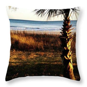 Palm Triangle Throw Pillow