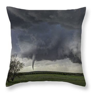 Palmer Divide Magic Throw Pillow