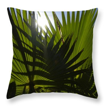 Throw Pillow featuring the photograph Palmetto 3 by Renate Nadi Wesley