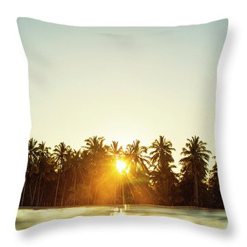 Palms And Rays Throw Pillow