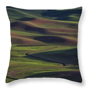 Palouse Abstract 1 Throw Pillow