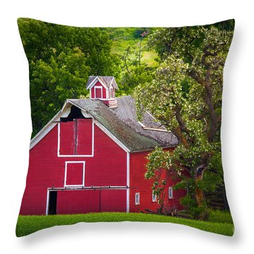 Palouse Barn Number 9 Throw Pillow by Inge Johnsson