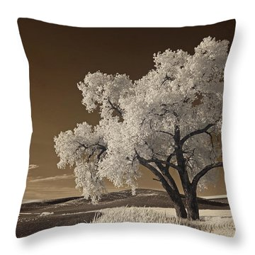 Palouse Throw Pillow