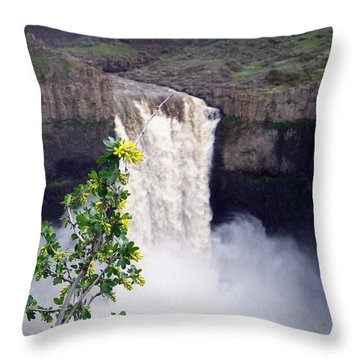 Throw Pillow featuring the photograph Palouse Falls by Charles Robinson