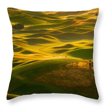 Throw Pillow featuring the photograph Palouse Swells by Dan Mihai