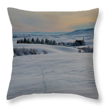Palouse Tracks Throw Pillow by Idaho Scenic Images Linda Lantzy