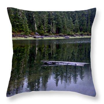 Pamelia Lake Reflection Throw Pillow