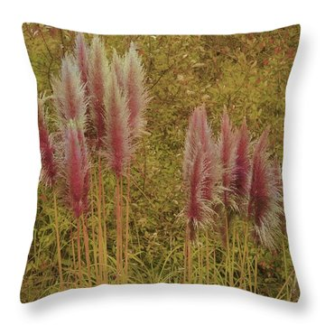 Throw Pillow featuring the photograph Pampas Grass by Athala Carole Bruckner
