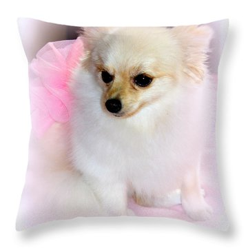 Pampered Pomeranian  Throw Pillow by Kathy  White