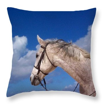 Throw Pillow featuring the photograph Pancho by Mary-Lee Sanders