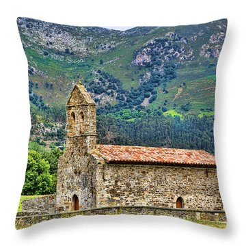 Panes_155a9893 Throw Pillow