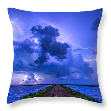Panhandle Flood Throw Pillow