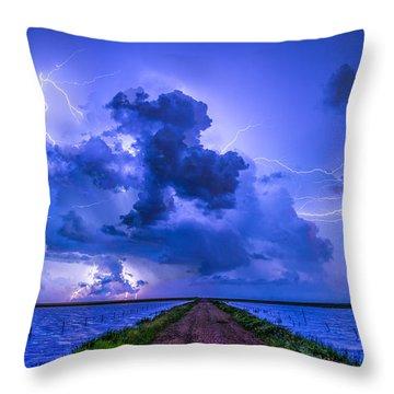 Panhandle Flood Throw Pillow