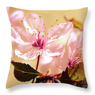 Panoplia Floral Throw Pillow