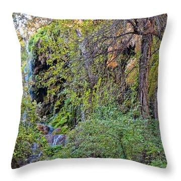 Panorama Of Gorman Falls At Colorado Bend State Park - Lampasas Texas Hill Country Throw Pillow