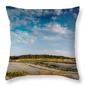 Panorama Of Muleshoe Bend Recreational Area Bluebonnets - Spicewood Lake Travis Texas Hill Country Throw Pillow