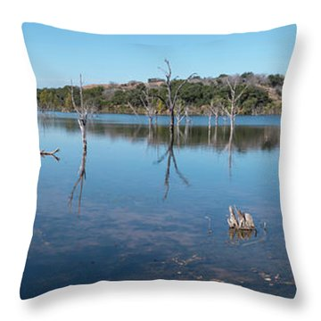 Panoramic View Of Large Lake With Grass On The Shore Throw Pillow