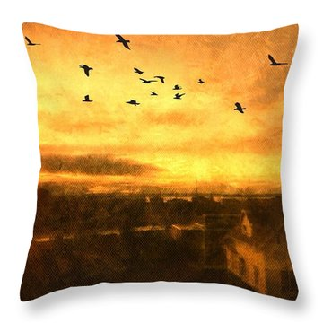 Panoramic View Of Seattle From The Balcony Throw Pillow