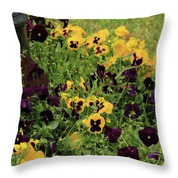 Throw Pillow featuring the photograph Pansies by Kim Henderson