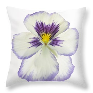 Pansy 2 Throw Pillow by Tony Cordoza