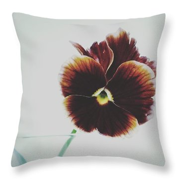 Throw Pillow featuring the photograph Pansy Face by Karen Stahlros
