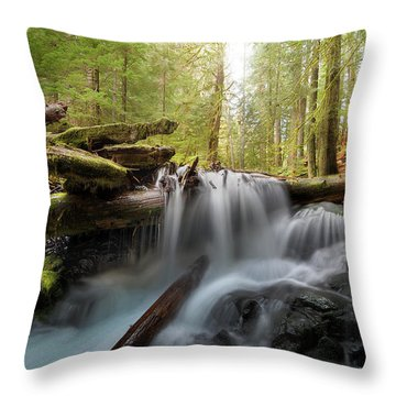 Panther Creek In Gifford Pinchot National Forest Throw Pillow by David Gn