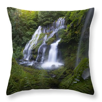 Panther Falls Throw Pillow