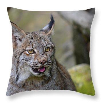 Panting Lynx Throw Pillow