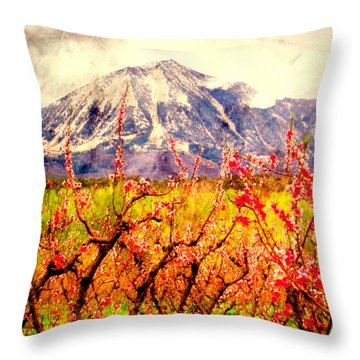 Paonia Peach Blossoms And Mount Lamborn IIi Throw Pillow