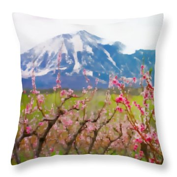 Paonia Peach Blossoms And Lamborn Iv Throw Pillow