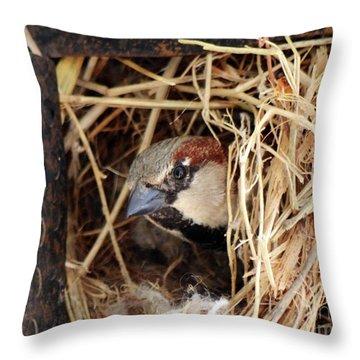 Papa Bird Throw Pillow