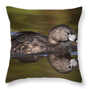 Papago Park Grebe Throw Pillow by Ruth Jolly