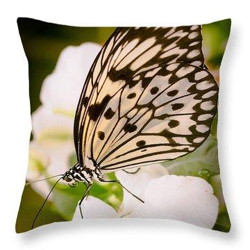 Paper Kite On White Throw Pillow