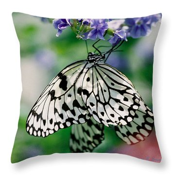 Throw Pillow featuring the photograph Paper Rice Butterfly by Donna Brown