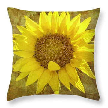Throw Pillow featuring the photograph Paper Sunshine by Melinda Ledsome