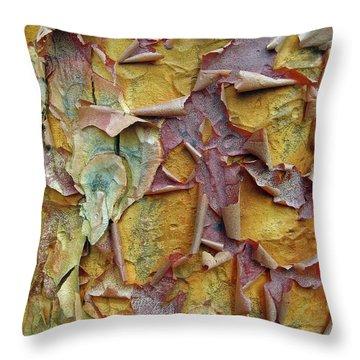 Paperbark Maple Tree Throw Pillow