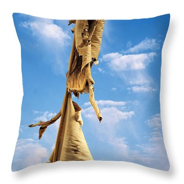 Paperbark Tree Throw Pillow by Christine Till