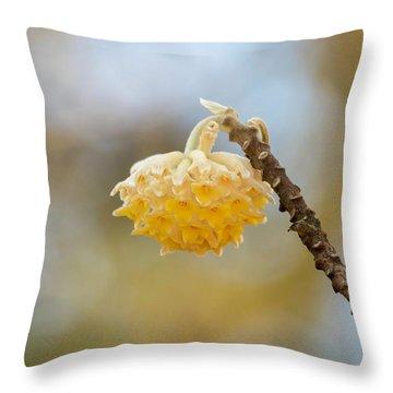 Paperbush Flower Throw Pillow