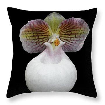 Paphiopedilum Micranthum Eburneum Orchid Throw Pillow