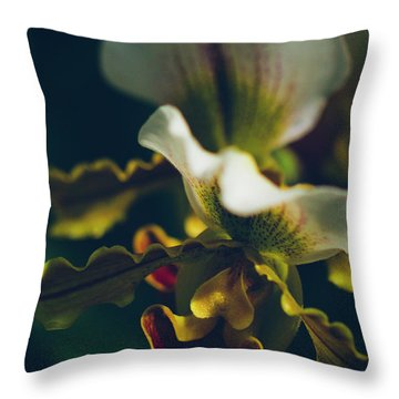 Throw Pillow featuring the photograph Paphiopedilum Villosum Orchid Lady Slipper by Sharon Mau