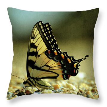 Papilio Glaucus Eastern Tiger Swallowtail Throw Pillow by Rebecca Sherman