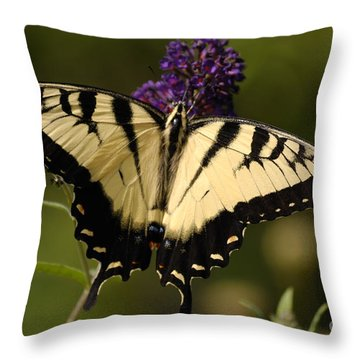 Papilio Yellow Throw Pillow