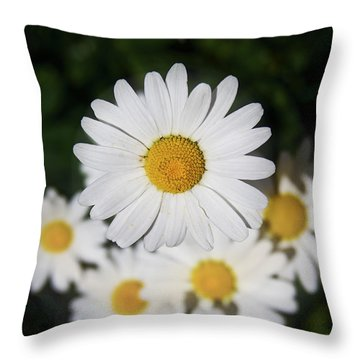Paquerette Throw Pillow