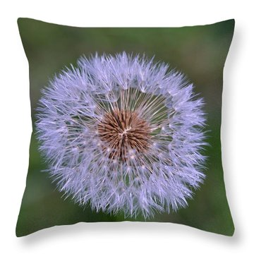 Parachute Club- Dandelion Gone To Seed Throw Pillow by David Porteus