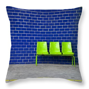 Paradaxochi Throw Pillow by Skip Hunt
