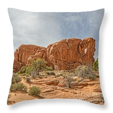 Throw Pillow featuring the photograph Parade Of Elephants by Sue Smith