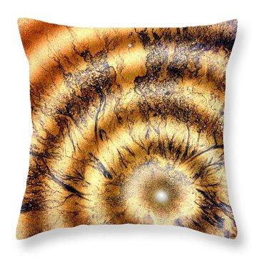 Paradigm Throw Pillow