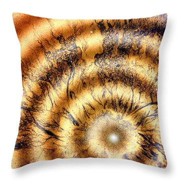 Paradigm Throw Pillow