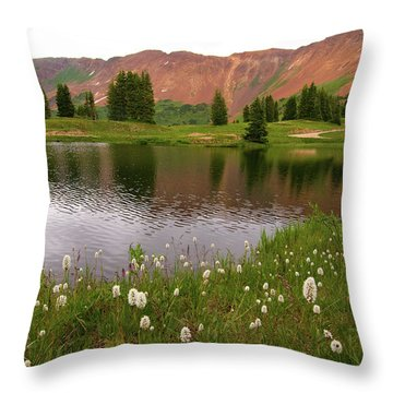 Throw Pillow featuring the photograph Paradise Basin by Steve Stuller