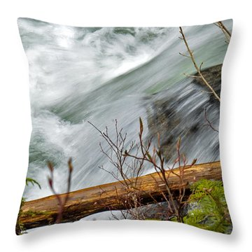 Paradise Express Throw Pillow